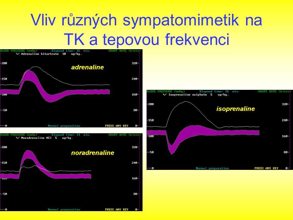 Vliv různých sympatomimetik na TK a tepovou frekvenci