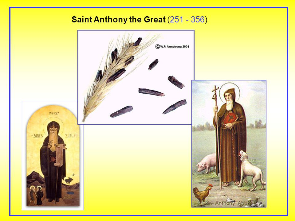 Saint Anthony the Great ( )