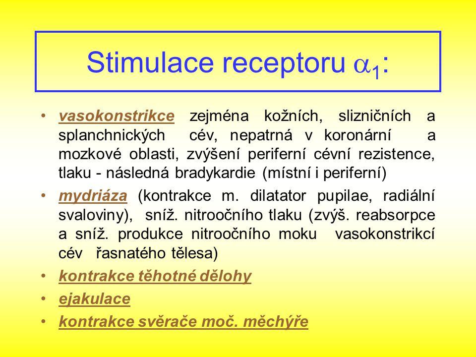 Stimulace receptoru 1: