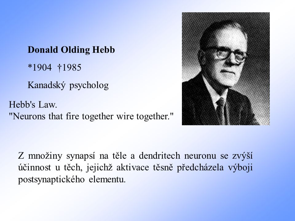 Donald Olding Hebb *1904 †1985. Kanadský psycholog. Hebb s Law. Neurons that fire together wire together.