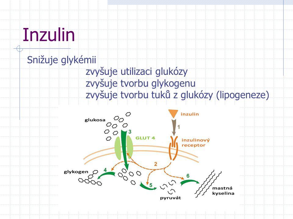 Inzulin Snižuje glykémii zvyšuje utilizaci glukózy