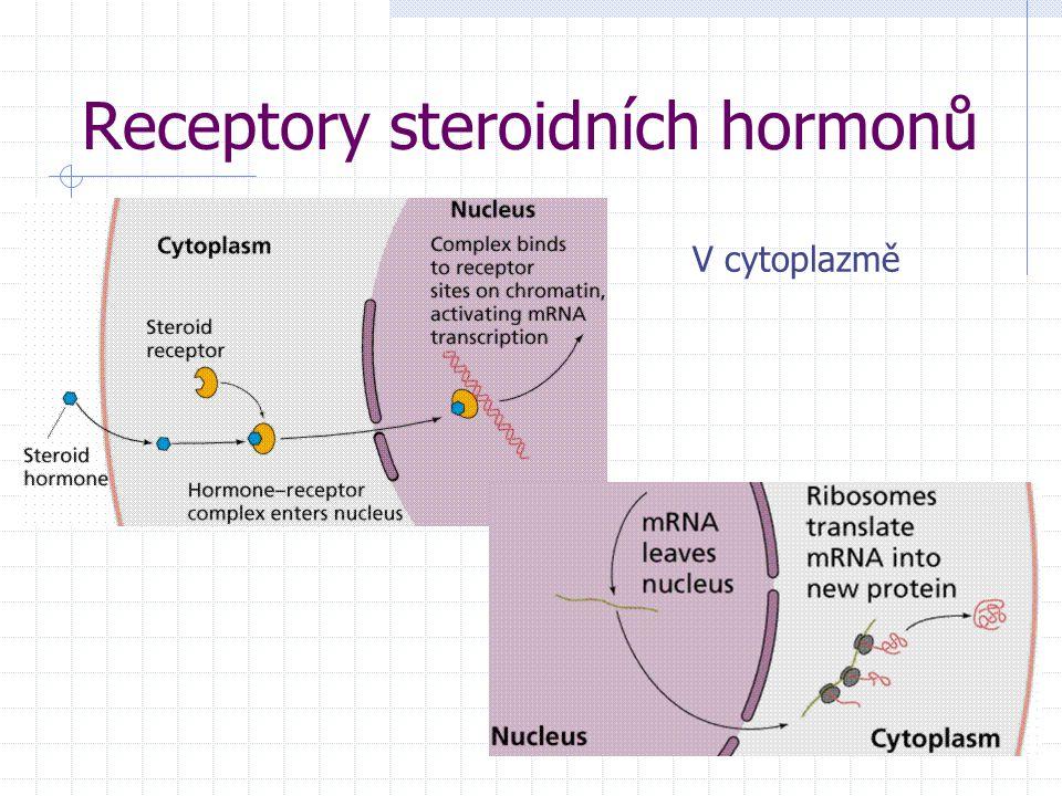 Receptory steroidních hormonů