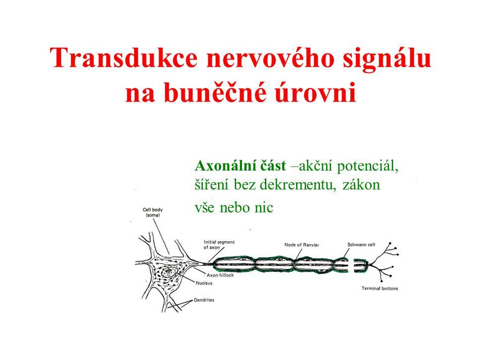 Transdukce nervového signálu na buněčné úrovni