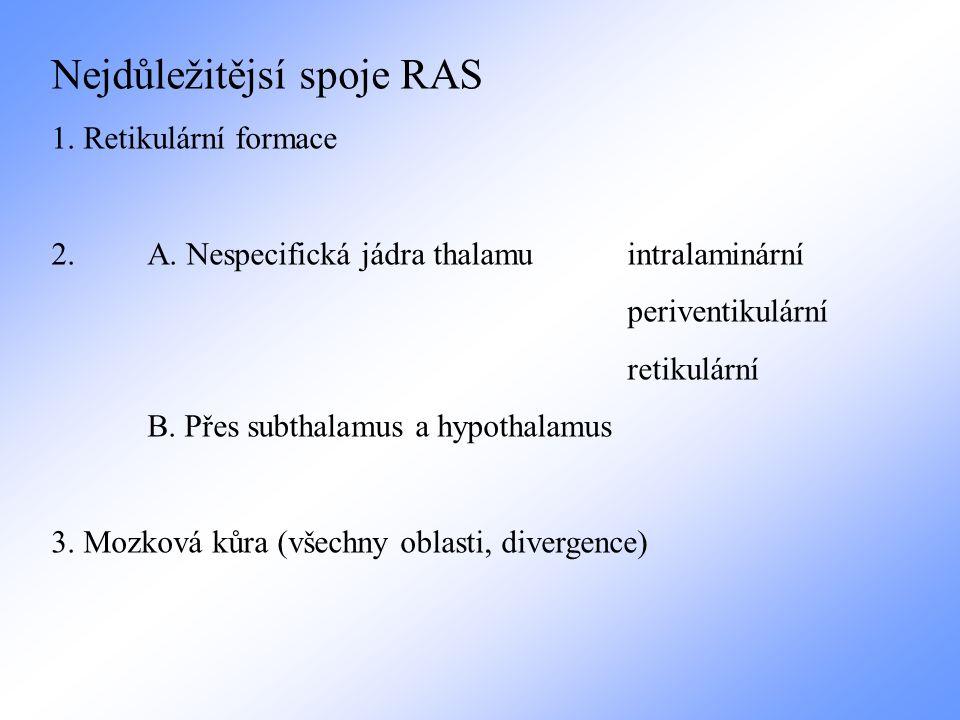 Nejdůležitějsí spoje RAS
