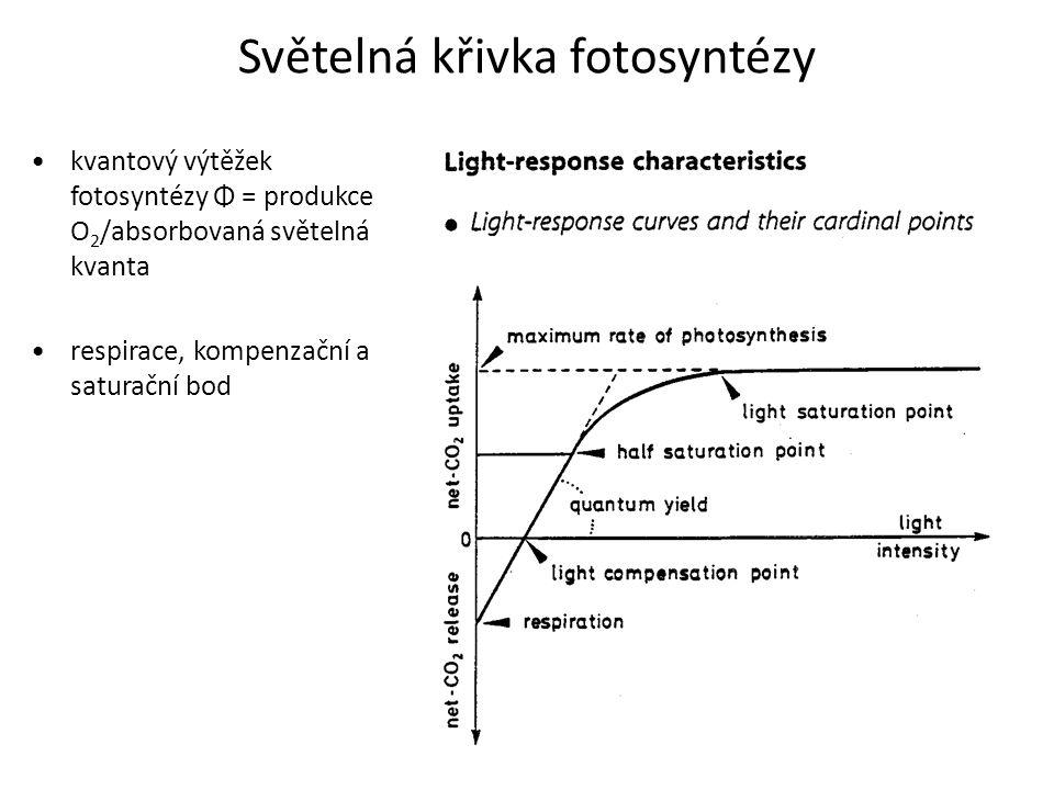 Světelná křivka fotosyntézy
