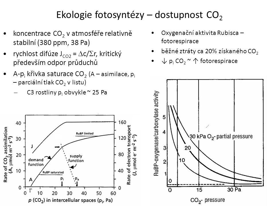 Ekologie fotosyntézy – dostupnost CO2