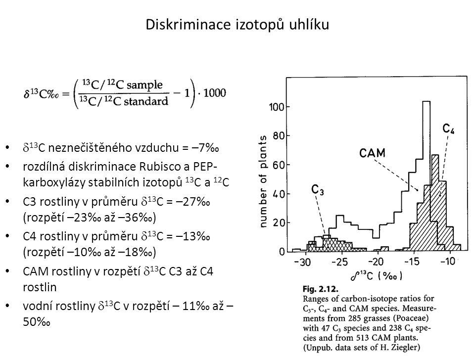 Diskriminace izotopů uhlíku