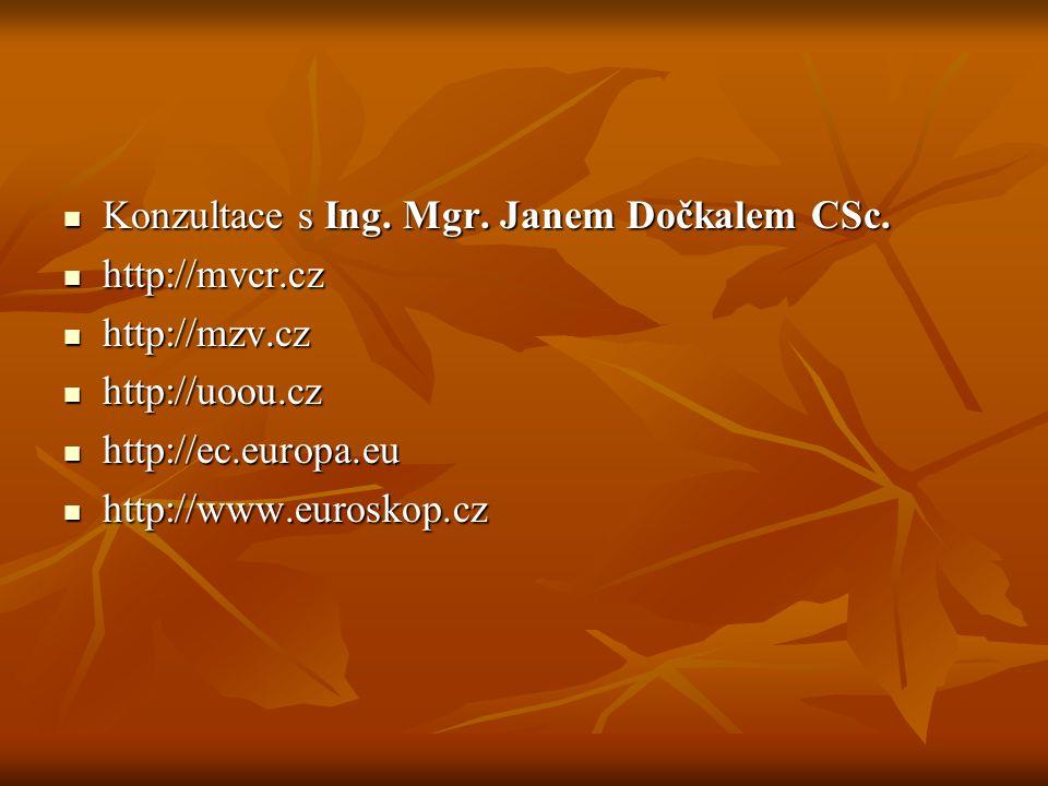 Konzultace s Ing. Mgr. Janem Dočkalem CSc.