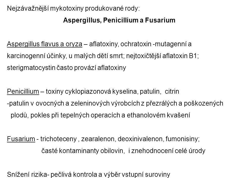 Nejzávažnější mykotoxiny produkované rody: