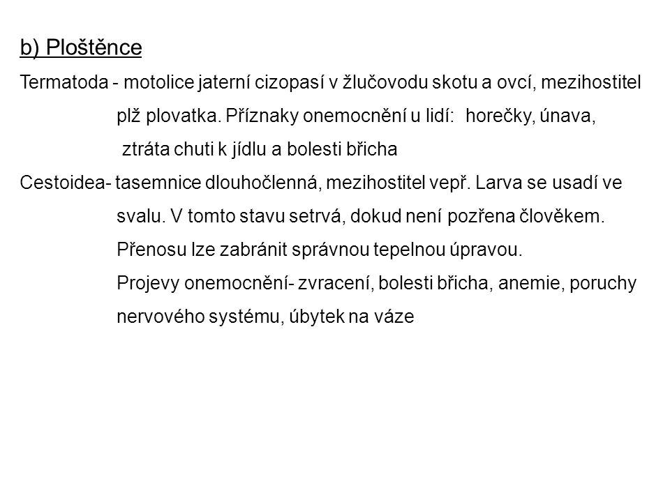 b) Ploštěnce Termatoda - motolice jaterní cizopasí v žlučovodu skotu a ovcí, mezihostitel.