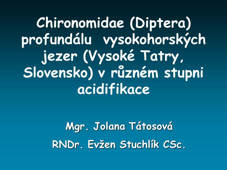 RNDr. Evžen Stuchlík CSc.