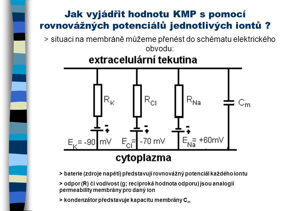 Jak vyjádřit hodnotu KMP s pomocí rovnovážných potenciálů jednotlivých iontů