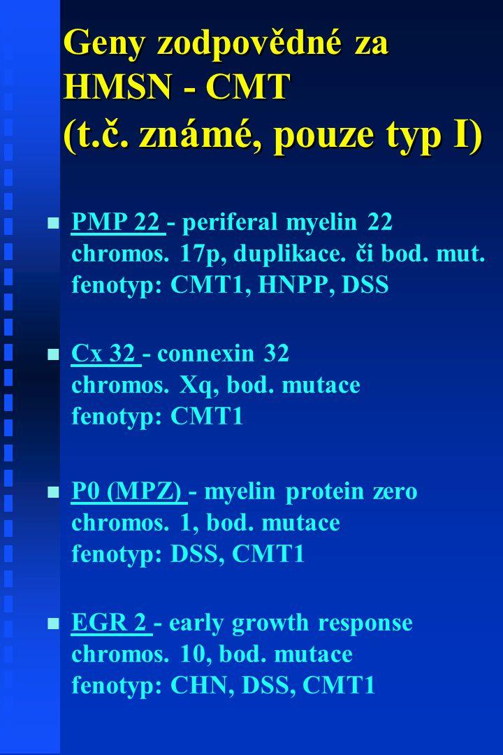 Geny zodpovědné za HMSN - CMT (t.č. známé, pouze typ I)