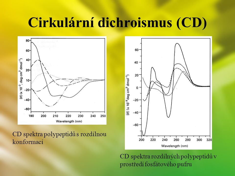 Cirkulární dichroismus (CD)