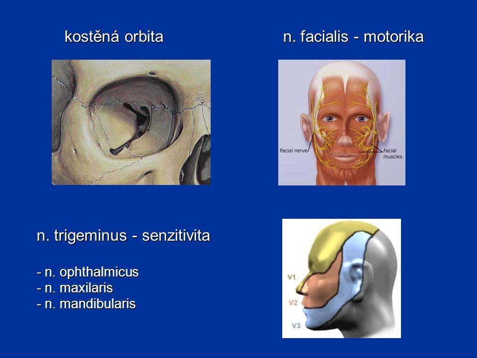 n. trigeminus - senzitivita