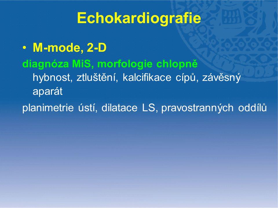Echokardiografie M-mode, 2-D