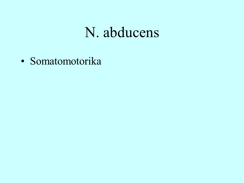 N. abducens Somatomotorika