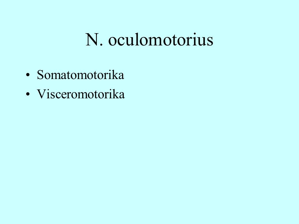 N. oculomotorius Somatomotorika Visceromotorika