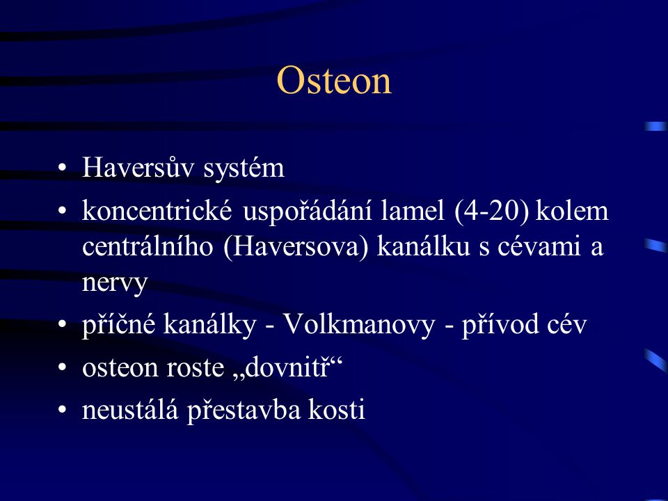 Osteon Haversův systém