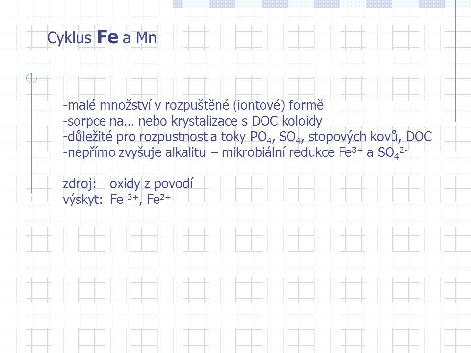 Cyklus Fe a Mn malé množství v rozpuštěné (iontové) formě