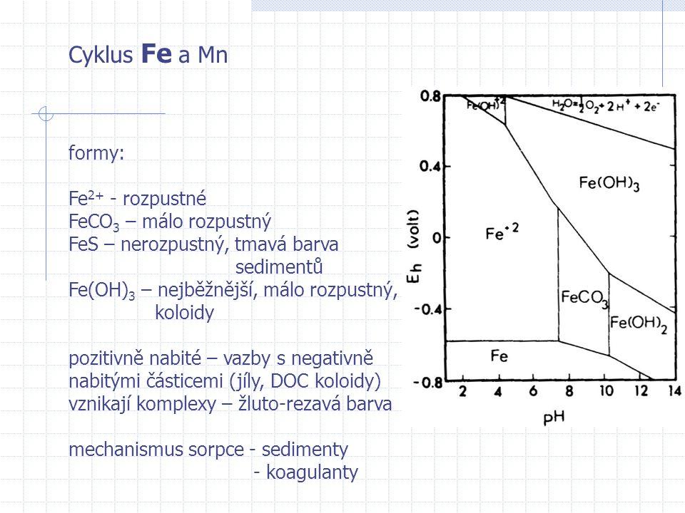 Cyklus Fe a Mn formy: Fe2+ - rozpustné FeCO3 – málo rozpustný