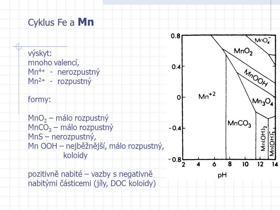 Cyklus Fe a Mn výskyt: mnoho valencí, Mn4+ - nerozpustný