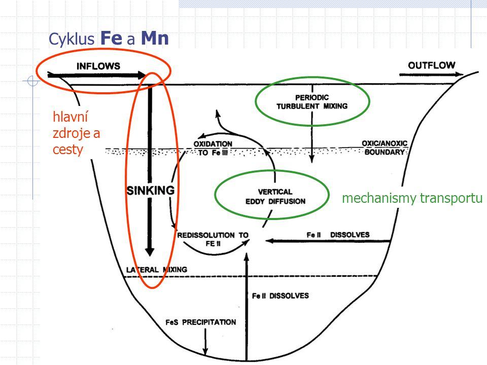 Cyklus Fe a Mn hlavní zdroje a cesty mechanismy transportu