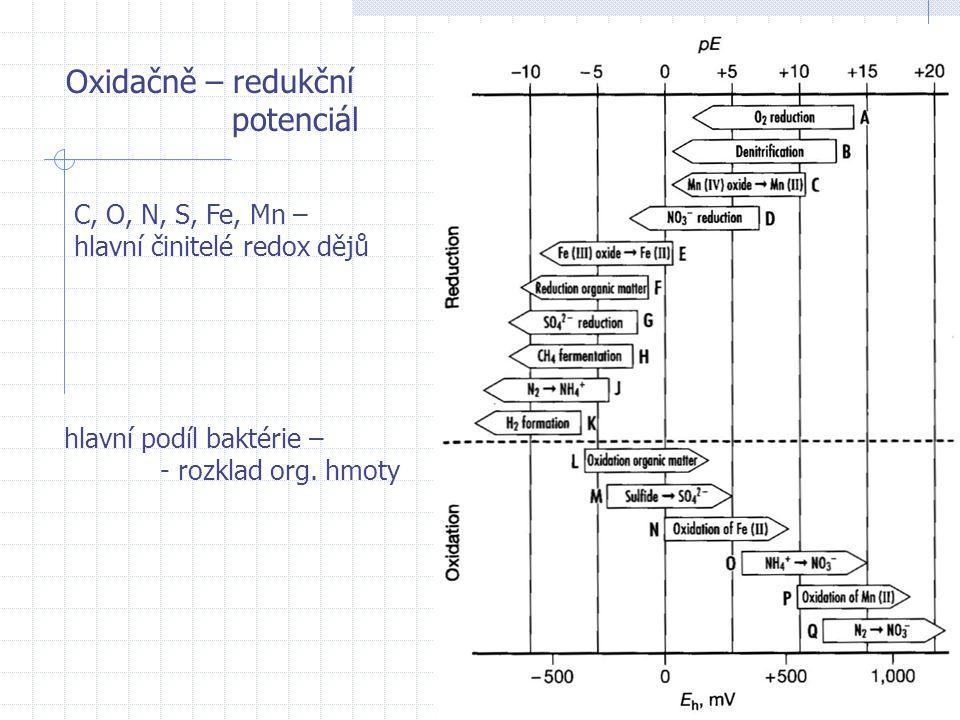 Oxidačně – redukční potenciál C, O, N, S, Fe, Mn –