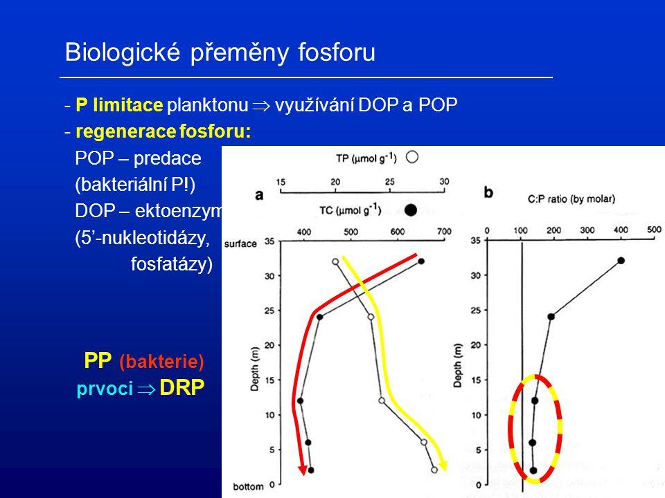 Biologické přeměny fosforu