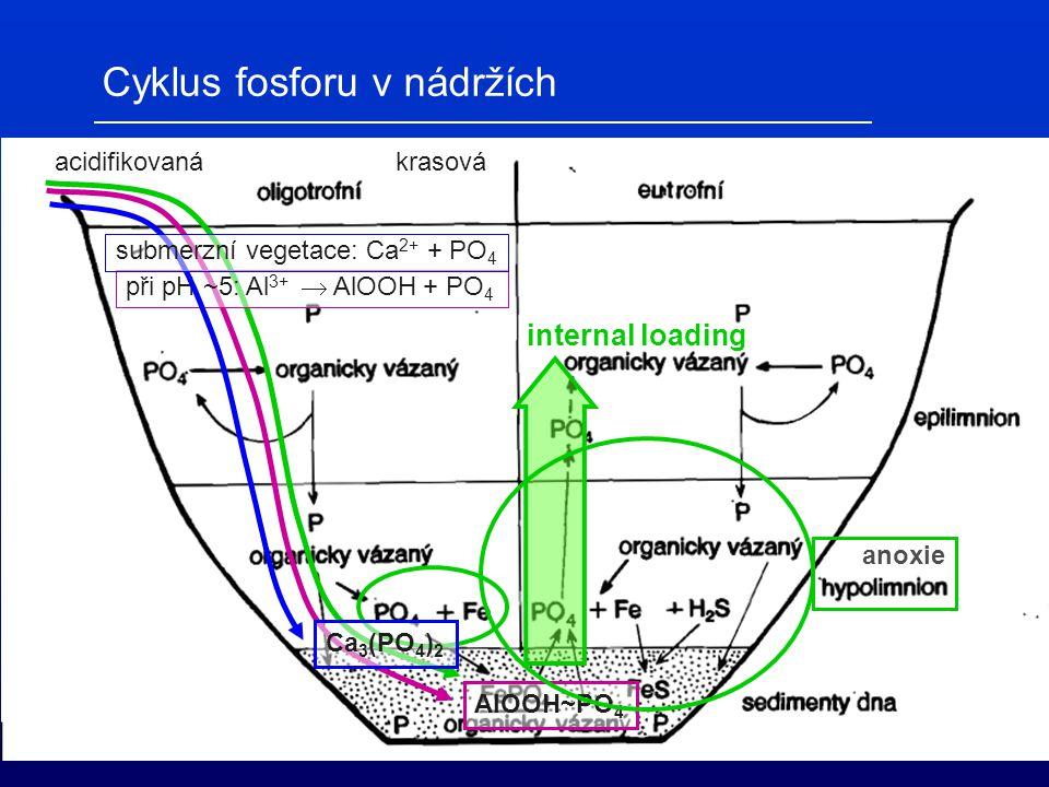 Cyklus fosforu v nádržích