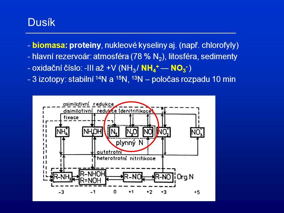 Dusík - biomasa: proteiny, nukleové kyseliny aj. (např. chlorofyly)