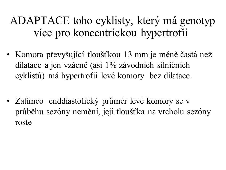 ADAPTACE toho cyklisty, který má genotyp více pro koncentrickou hypertrofii