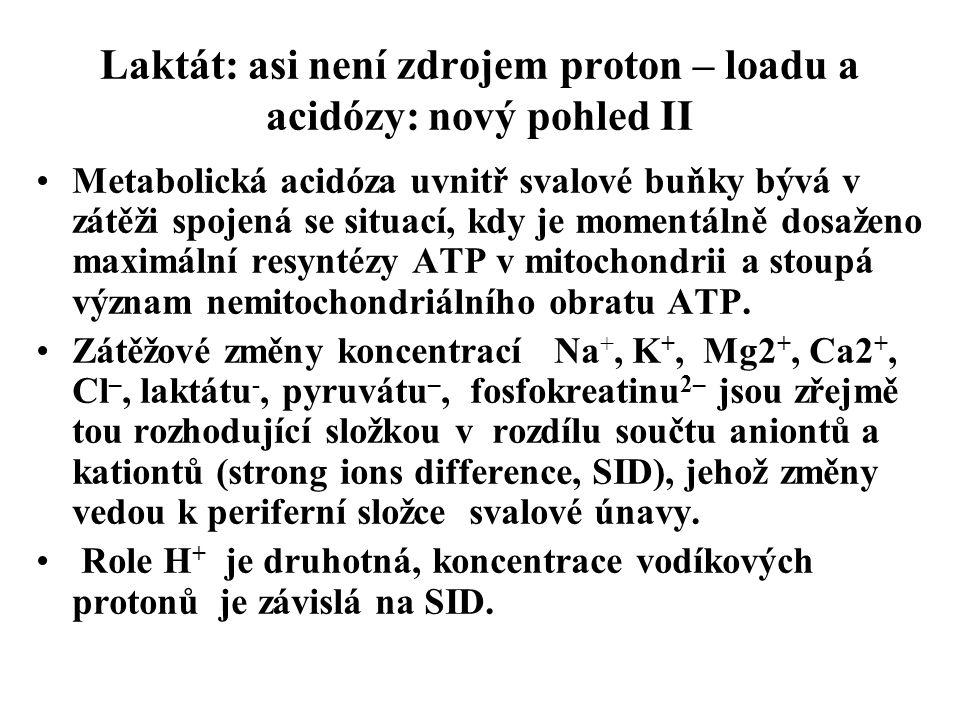 Laktát: asi není zdrojem proton – loadu a acidózy: nový pohled II