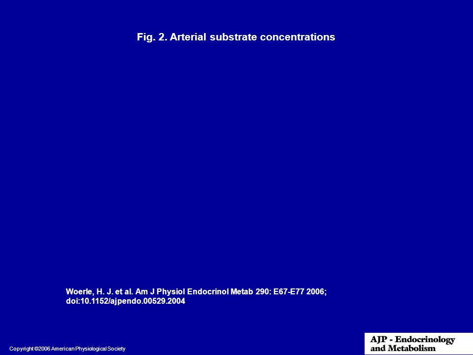Fig. 2. Arterial substrate concentrations