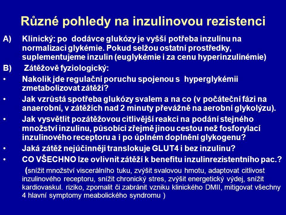 Různé pohledy na inzulinovou rezistenci