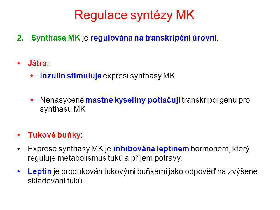 Regulace syntézy MK Synthasa MK je regulována na transkripční úrovni.
