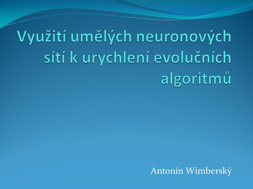 Využití umělých neuronových sítí k urychlení evolučních algoritmů