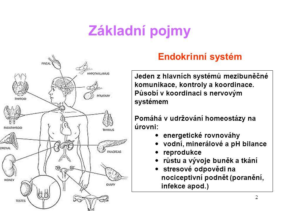 Základní pojmy Endokrinní systém