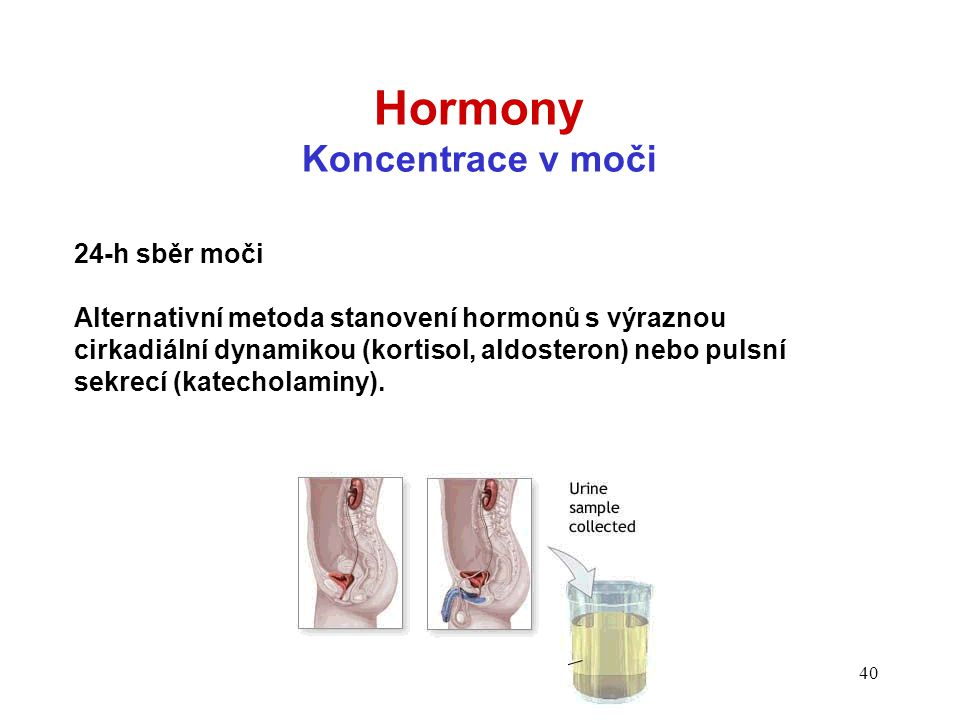 Hormony Koncentrace v moči 24-h sběr moči