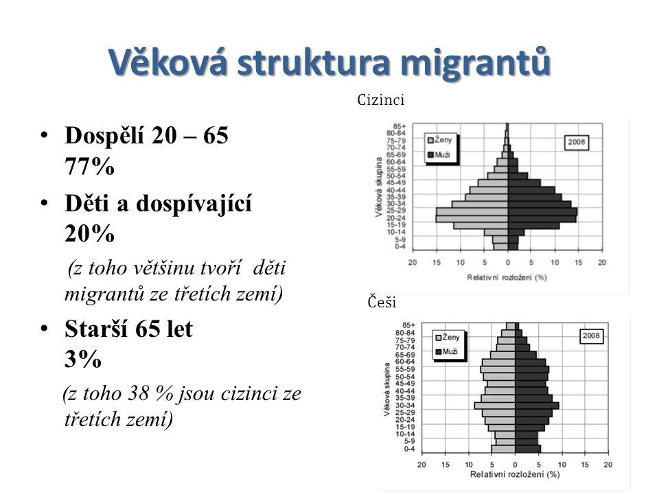 Věková struktura migrantů