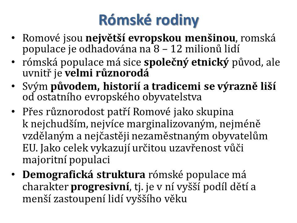Rómské rodiny Romové jsou největší evropskou menšinou, romská populace je odhadována na 8 – 12 milionů lidí.