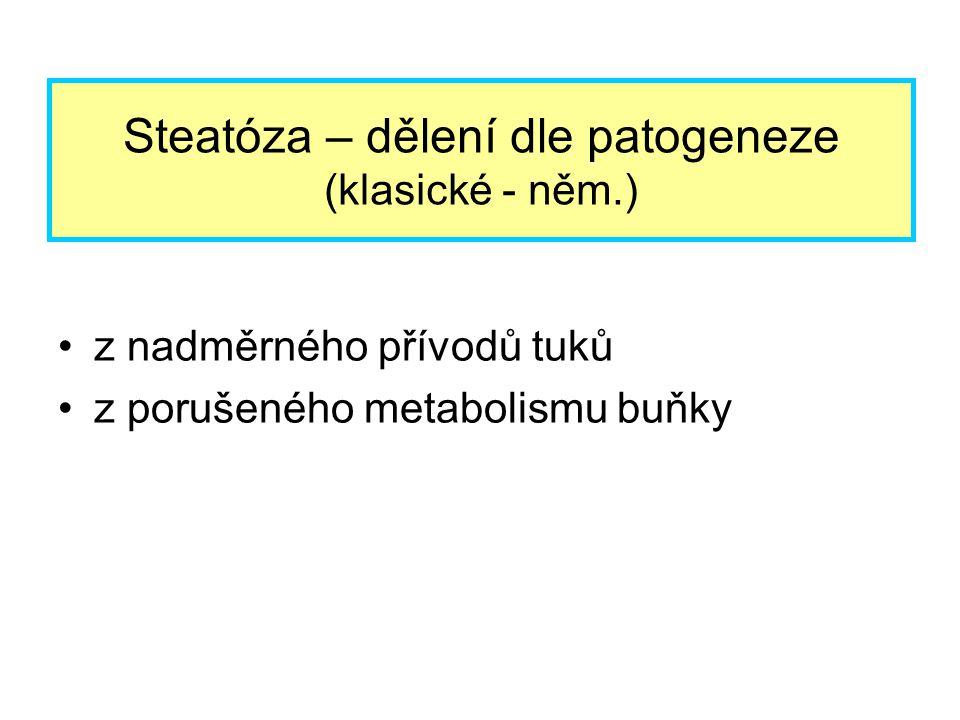 Steatóza – dělení dle patogeneze (klasické - něm.)
