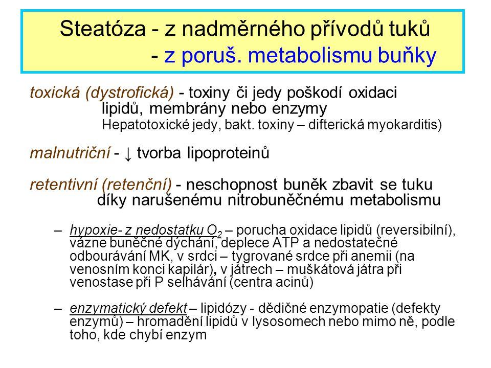 Steatóza - z nadměrného přívodů tuků - z poruš. metabolismu buňky