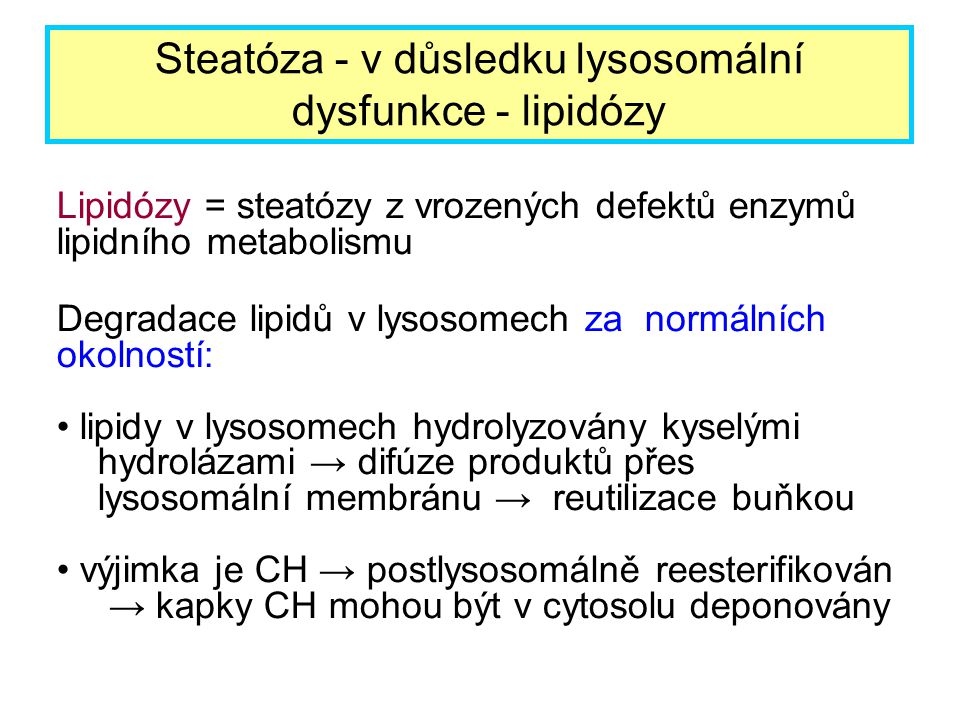 Steatóza - v důsledku lysosomální dysfunkce - lipidózy