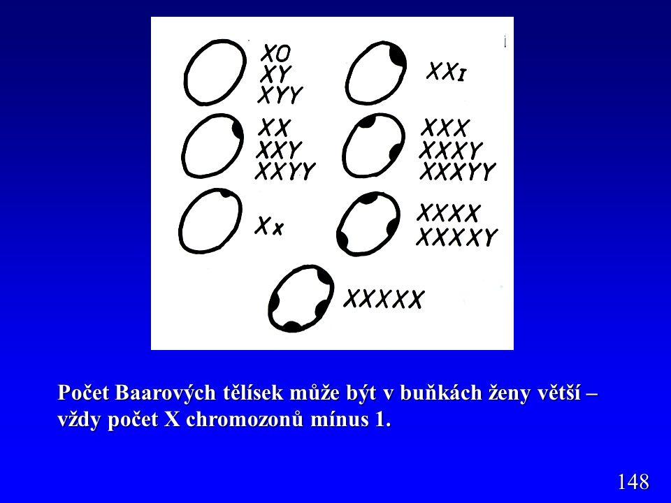 Počet Baarových tělísek může být v buňkách ženy větší – vždy počet X chromozonů mínus 1.