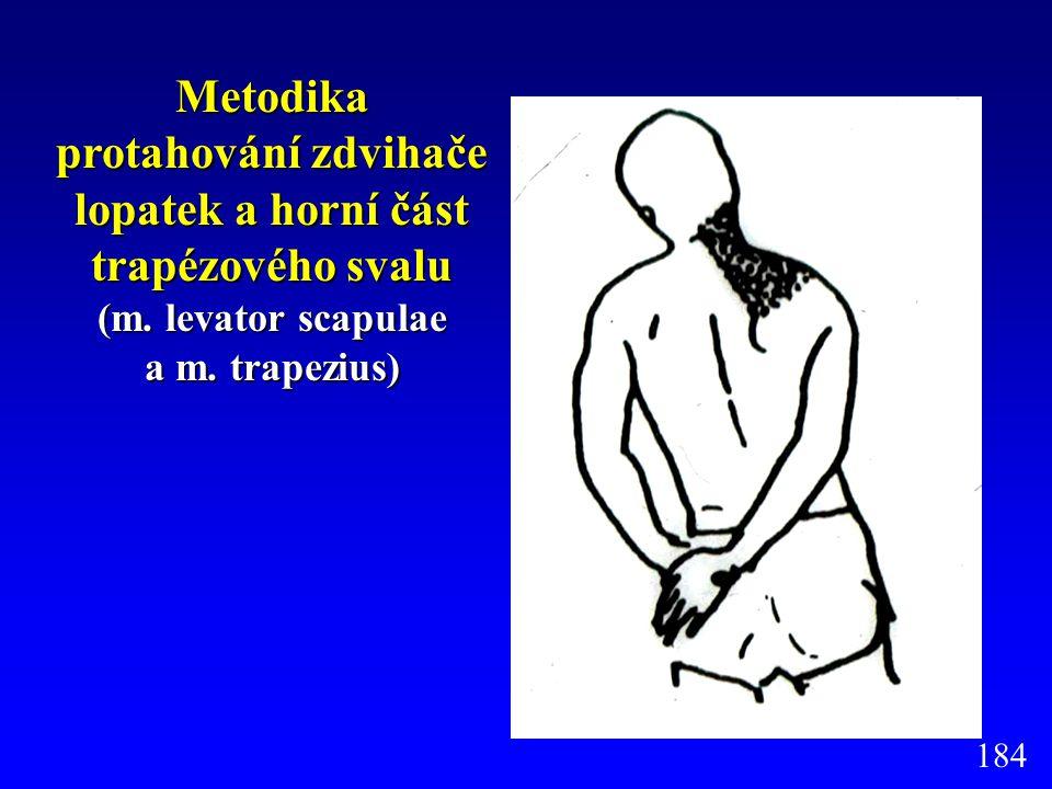 Metodika protahování zdvihače lopatek a horní část trapézového svalu