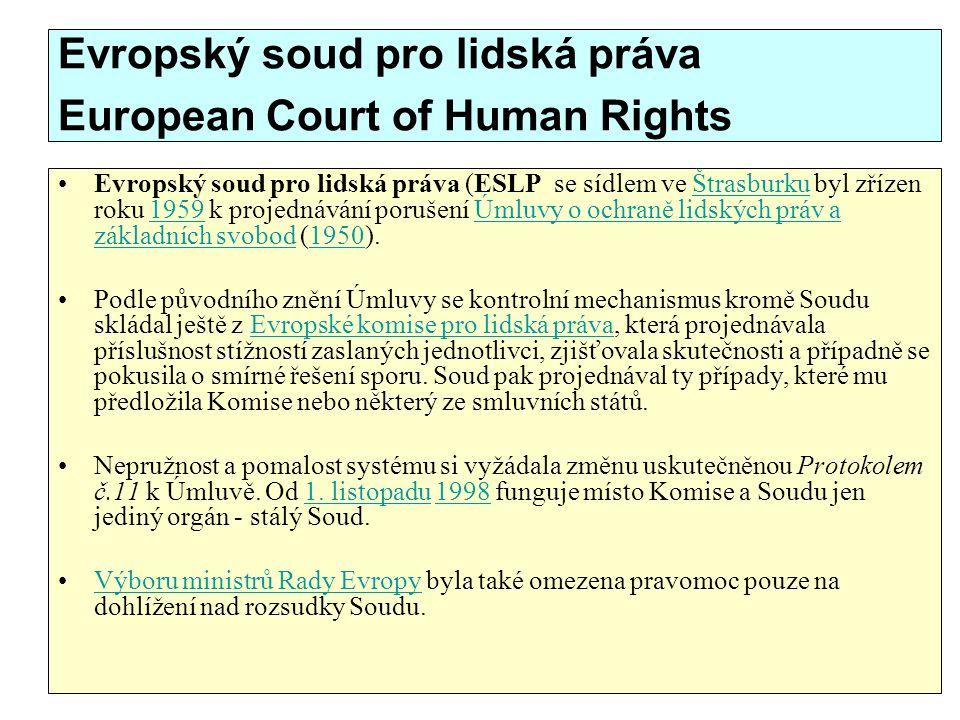 Evropský soud pro lidská práva European Court of Human Rights