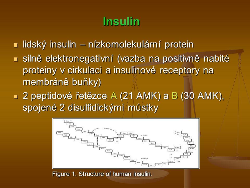Insulin lidský insulin – nízkomolekulární protein
