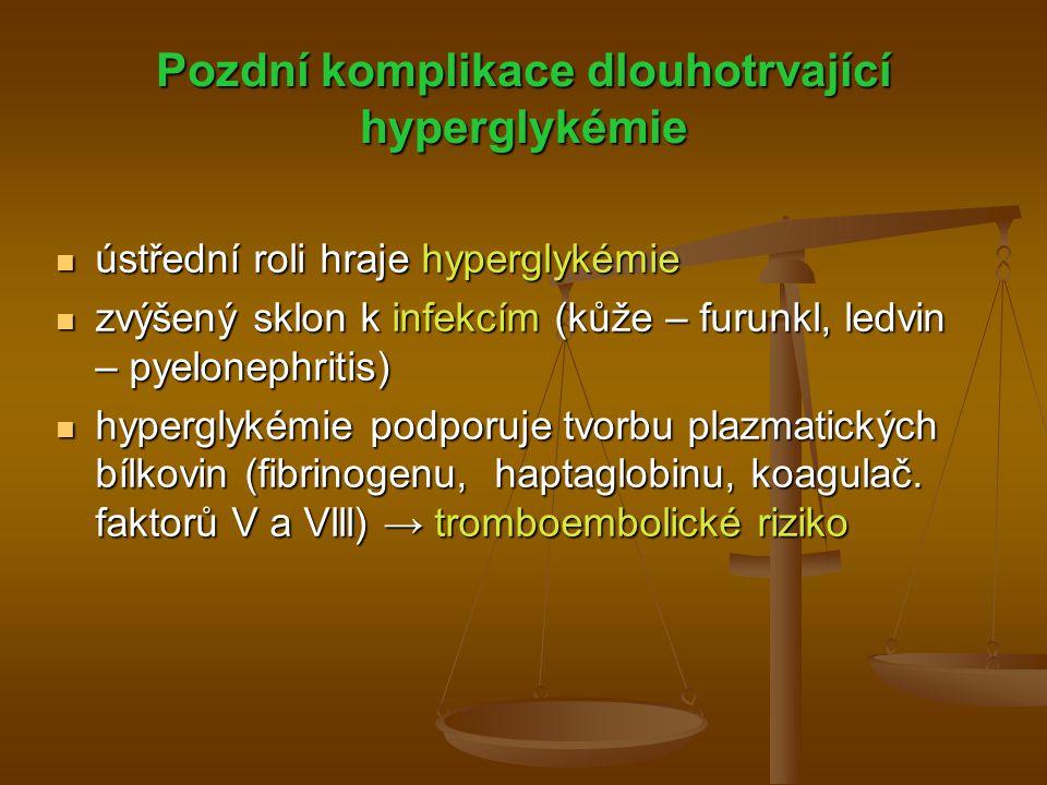 Pozdní komplikace dlouhotrvající hyperglykémie
