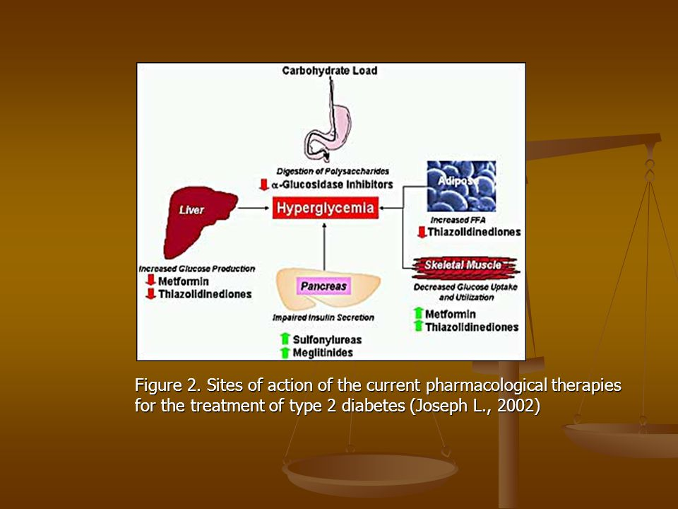 Figure 2. Sites of action of the current pharmacological therapies